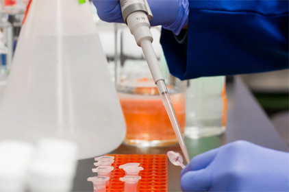 Coronavirus (COVID-19) and Workplace Safety Issues